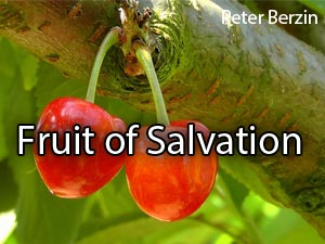 Fruit of Salvation